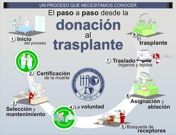 paso a paso del transplante